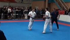 Amazing Karate Kick