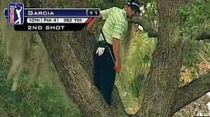 Sergio Garcia's Merged Tree Climbing and Golf